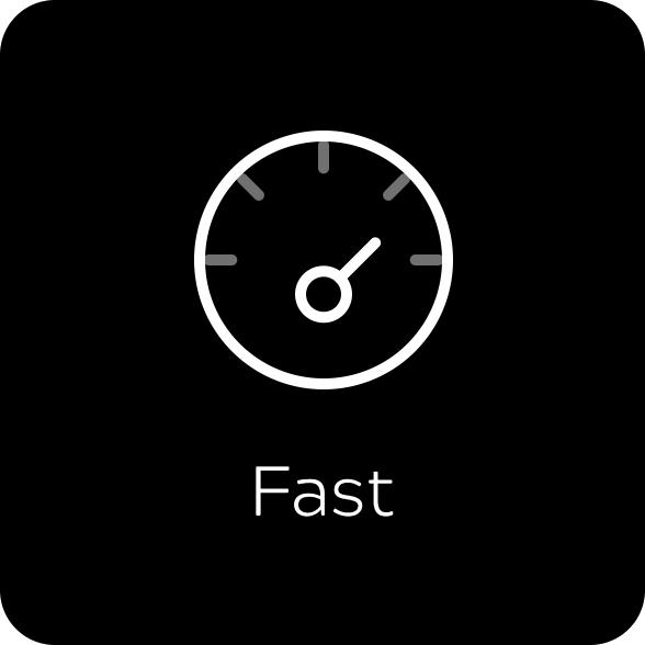 fast-icon